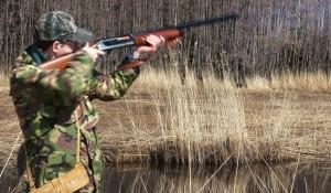 Охота ружье