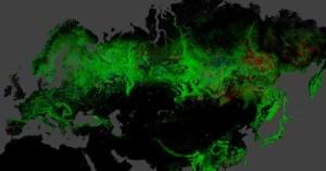 Интерактивная карта лесов башкирии