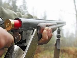 Ружьё охотники
