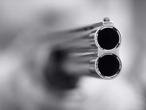 Охотничье ружье стрелять