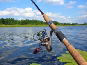 Рыбаки чемпионат по рыбной ловле