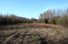 Открытие весенней охоты 2017 в Свердловской области